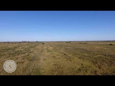 37 hectáreas Pilar