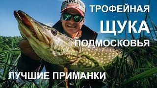 Рыбалка на щук в подмосковье