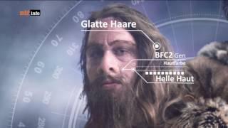 Der Tödliche Supervulkan   Apokalypse Der Neandertaler HD 2017