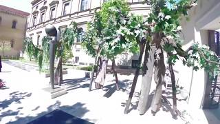 Stelzen | Living Trees - Stelzenläufer / Stelzengeher
