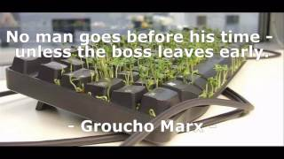 Funny Work Quotes I EverydayQuotes.net