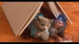 Aaron'sAnimals Funny Compilation *MUST SEE* || FunnyVines - Video Youtube