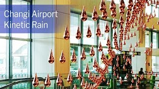 Vignette de Mesmerizing Kinetic Rain at Singapore Changi Airport