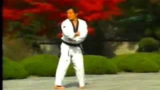 taekwondo poomse 7