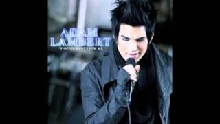 Adam Lambert   Just the Way It Is