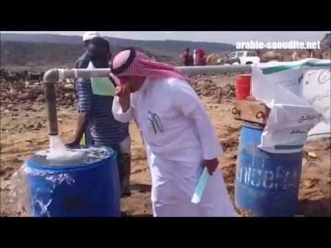 relation israel arabie saoudite