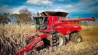 Epic Corn Picking Wisconsin Style - Welker Farms Inc