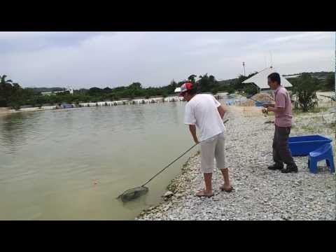 exotic rawang fishing pond