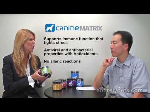 Canine Matrix Joint Video