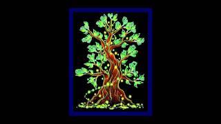 Медитации на Деньги   Активация Денежного Древа Жизни