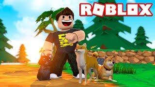 JEG FIK EN ZEBRA HUND! - Roblox Pet Simulator Dansk Ep 1