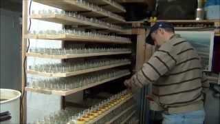 Imkerei 36 Teelichter Gießen mit Bienenwachs