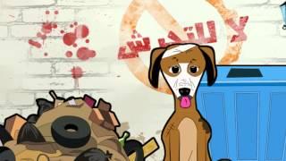 تحميل و مشاهدة Wael Amer Kalbon Balady Official Video وائل عامر قصة كلب بلدى MP3