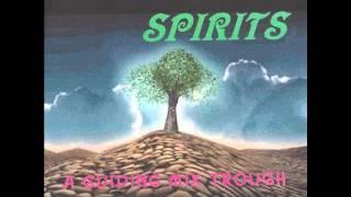 DJ Phoenix - Forest Spirits