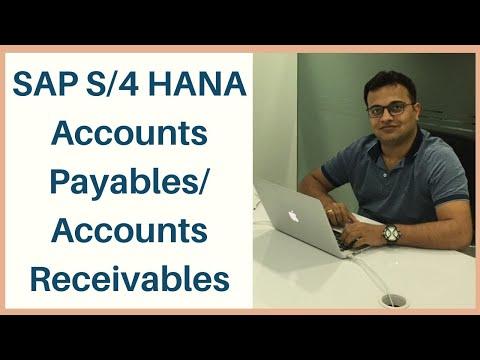 SAP S/4 HANA Accounts Payables/ Accounts Receivables || SAP AP ...
