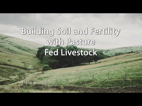 Building Soil and Fertility with Pasture Fed Livestock