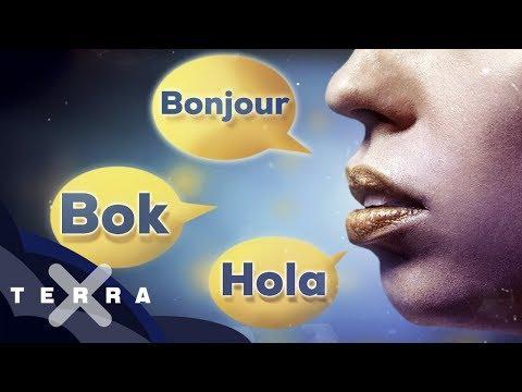 Warum spricht niemand europäisch?
