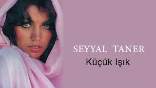 Seyyal Taner /  Küçük Işık