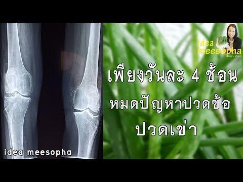 การรักษาแพทย์ phlebologist เส้นเลือดขอด