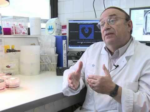 Cancerul de prostata simptome si tratament