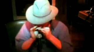 Train Song Harmonica - Daniel Cohen ( Live )