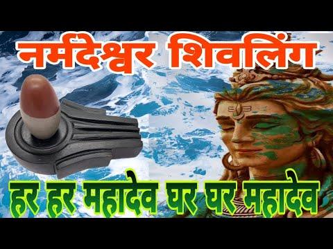 Original Narmadeswar Shivling Puja