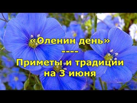 Народный праздник «Оленин день»  Приметы и традиции на 3 июня