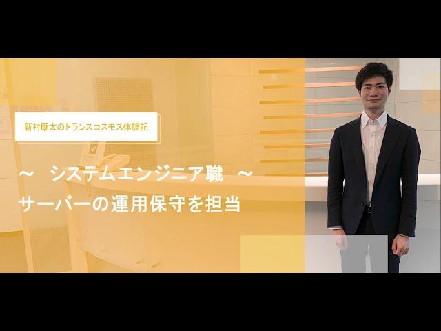 【社員インタビュー】トランスコスモス(システムエンジニア職)