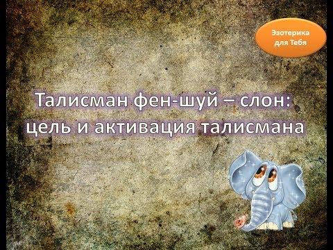 Андрей примак астролог