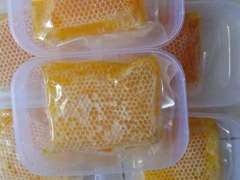 WA 085-648-404-735 Jual Madu Sarang Lebah Untuk Ibu Hamil Tasikmalaya Bandung Cirebon