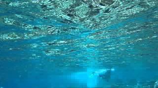 preview picture of video 'Schnorcheln Sun Island Malediven'