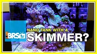 Is a skimmer necessary on a nano reef aquarium? | 52 FAQ