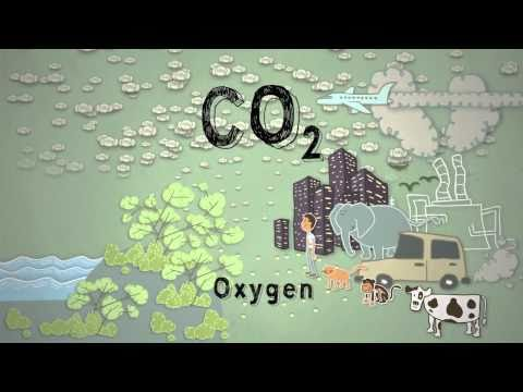 Climate Science in a Nutshell #4: Too Much Carbon Dioxide