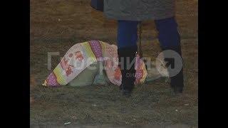 Из-за аварии в центре Хабаровска полицейский чуть не застрелил хозяйского алабая. Mestoprotv