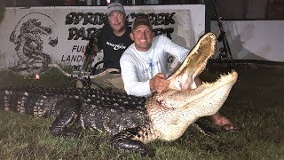 Massive Alligator {HUNT CLEAN COOK} Complete Video! GOURMET!!!