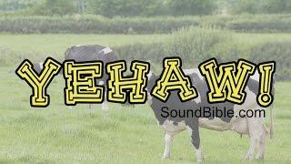 Http Soundbible Com Blog  Royalty Free Nature Sounds