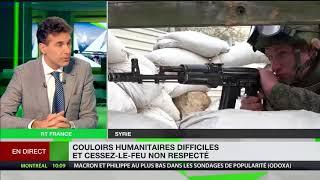 Alexandre del Valle : « En Syrie, les véritables criminels sont les djihadistes » (RT France)