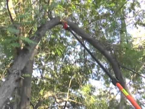 Power Tree Pruner