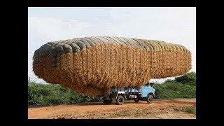 Unbelievable Crazy Amazing Agriculture Heavy Equipment