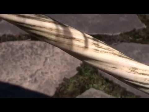 Kuko halamang-singaw ay maaaring dissolved