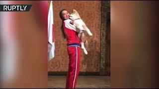 Алине Загитовой подарили щенка акита-ину за победу в Олимпийских играх