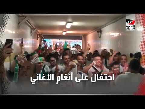 على أنغام الأغاني الجزائرية.. احتفالات عارمة
