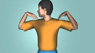 Как делать зарядку для тела по утрам - Видео онлайн