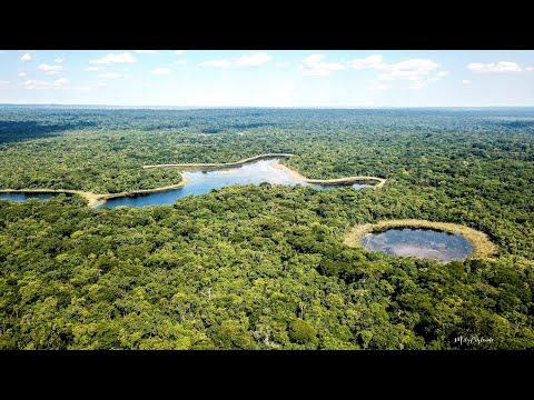 Reserva Natural de Bosque Mbaracayú