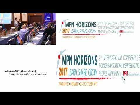 Brain Storm Session MPN Horizons 2017