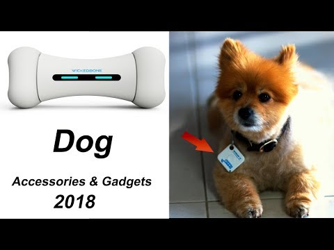 7 Cool Dog Accessories 2018 & Gadgets You Must Have