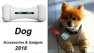 7 Cool Dog Accessories & Gadgets You Must Have