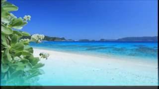 【作業・癒しBGM】波の音とハワイアンミュージック Hawaiian Music Surf Song
