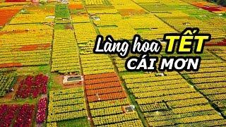 Khoai Lang Thang về quê ăn Tết  Du lịch Làng Hoa Cái Mơn Bến Tre
