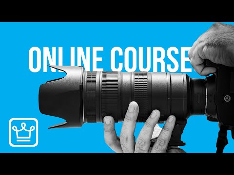 Top 10 Most Useful Online Courses That Are FREE